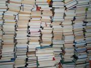 100 Sachbücher = 15,