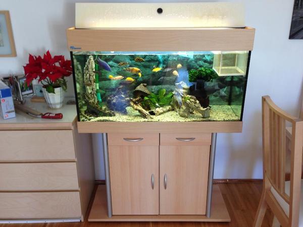 aquarium inklusive neu und gebraucht kaufen bei. Black Bedroom Furniture Sets. Home Design Ideas