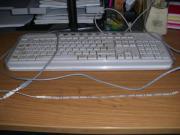 2x LED Band