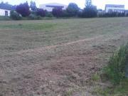3000qm² Grundstück in