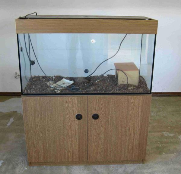 aquarium terrarium kleinanzeigen tiermarkt deinetierwelt. Black Bedroom Furniture Sets. Home Design Ideas