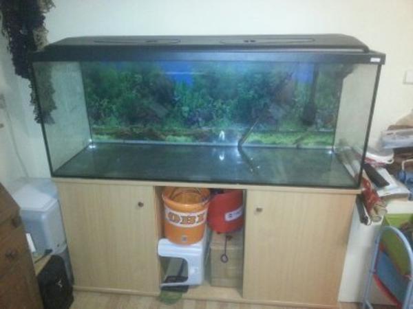 aquarium 450l mit abdeckung und unterschrank in altdorf. Black Bedroom Furniture Sets. Home Design Ideas