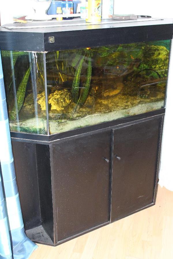 aquarium juwel 5 eck liter in oberderdingen fische aquaristik kaufen und verkaufen. Black Bedroom Furniture Sets. Home Design Ideas
