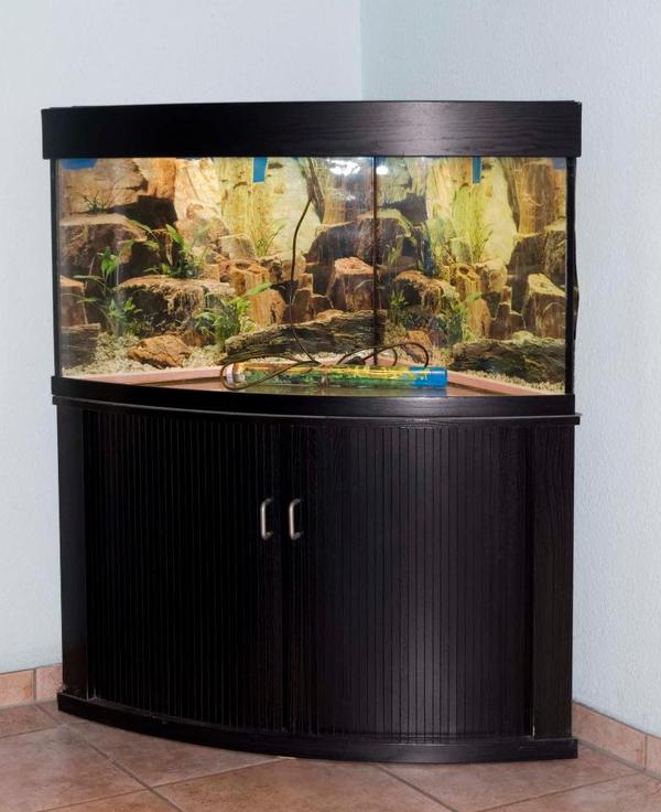 rundes aquarium kleinanzeigen tiermarkt deine. Black Bedroom Furniture Sets. Home Design Ideas
