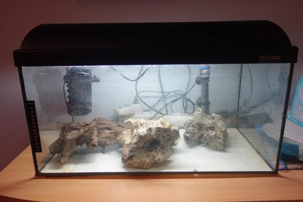aquarium komplettpaket g nstig abzugeben in f rth fische aquaristik kaufen und verkaufen ber. Black Bedroom Furniture Sets. Home Design Ideas