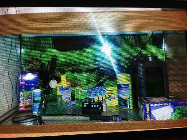 Aquarium komplettset von juwel 200l in neustadt fische for Aquarium komplettset