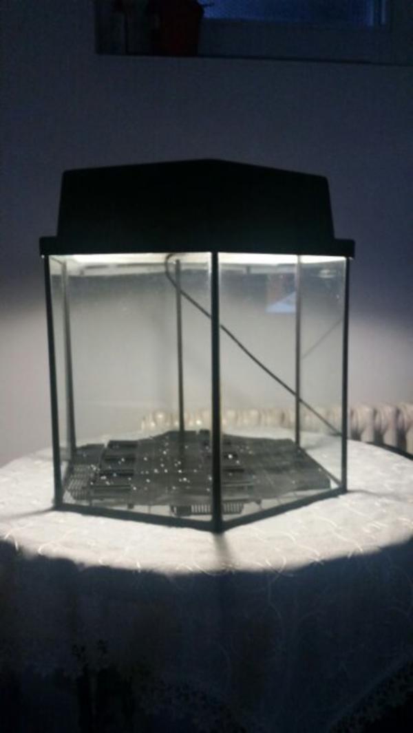 aquarium nano 6 eckig in berlin fische aquaristik kaufen und verkaufen ber private kleinanzeigen. Black Bedroom Furniture Sets. Home Design Ideas