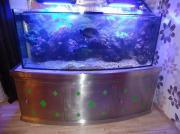 Aquarium Panorama Glas