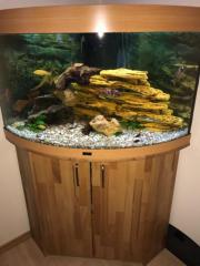 Aquarium Trigon 190