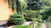 Biete Garten mit