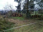 Brennholz zu verkaufen,