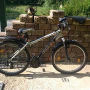 Bulls Fahrrad 26