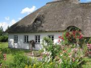 Charmantes Reetdachhaus