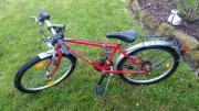 Fischer Kinder Fahrrad