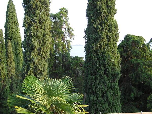 Bild 4 gardone riviera italien gardasee westufer m nchen for Ferienimmobilien italien