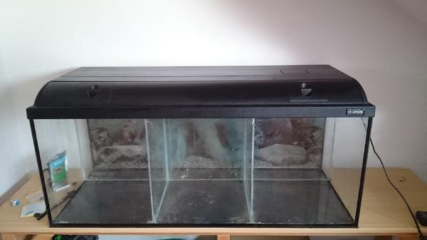 garnelen aquarium 160 l dreigeteilt in schwarzach fische aquaristik kaufen und verkaufen. Black Bedroom Furniture Sets. Home Design Ideas