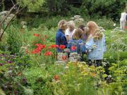 Garten in Rohrbach,