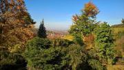 Garten Strümpfelbach