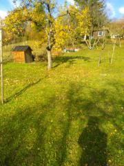 Gartengrundstück,Schrebergarten Dietlingen/