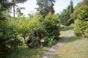 Großzügiges idyllisches Gartengrundstück