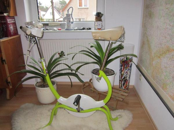 heimtrainer 70er jahre in berlin sonstige fahrr der kaufen und verkaufen ber private. Black Bedroom Furniture Sets. Home Design Ideas