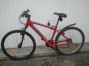 Herren Mountainbike 26