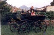 Jagdwagen, 1890~, Originalzustand