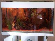 Juwel Aquarium 120Liter