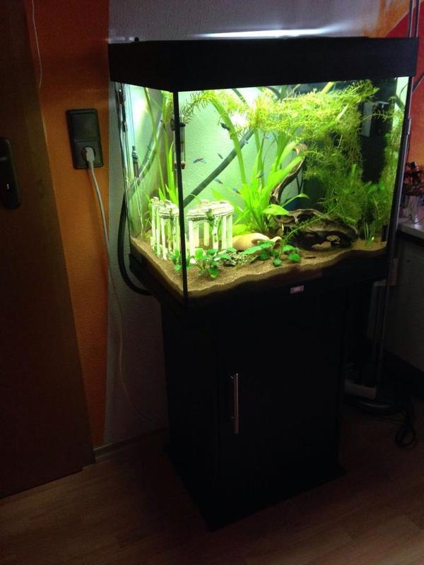Lido aquarium neu und gebraucht kaufen bei for Aquarium gebraucht