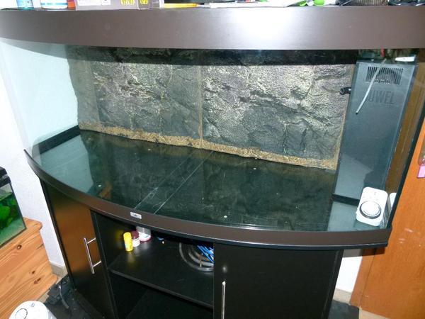 juwel aquarium schrank kombination vision 450 schwarz hochwertiges komplett set mit. Black Bedroom Furniture Sets. Home Design Ideas