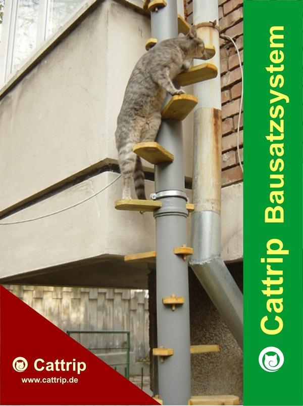 katzenleiter katzentreppe balkontreppe balkonleiter kratzbaum wendeltreppe bausatz freig nger in. Black Bedroom Furniture Sets. Home Design Ideas