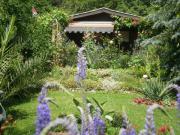 Kleingarten zur Pacht