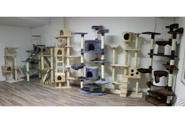 kratzb ume ausstellungsraum neu in hohensch nhausen in berlin katzen kaufen und verkaufen ber. Black Bedroom Furniture Sets. Home Design Ideas