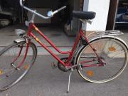 KTM Vintage Cruiser