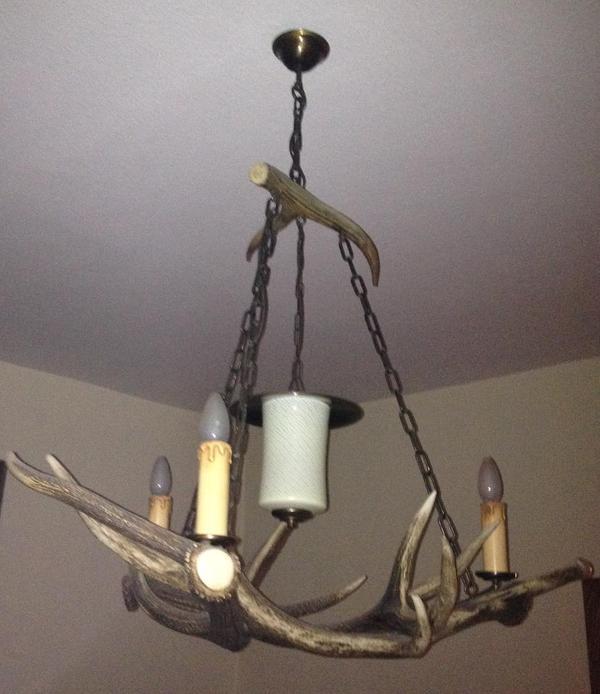 lampe mit geweigstangen in ramsen lampen kaufen und verkaufen ber private kleinanzeigen. Black Bedroom Furniture Sets. Home Design Ideas