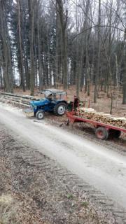 Lohnspalten Lohnsägen Brennholz