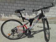 Mountain-Bike BULLS