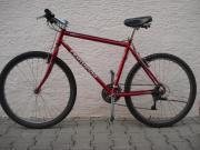 Mountainbike Centurion
