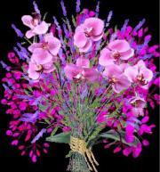 Nachfolger für Blumengeschäft