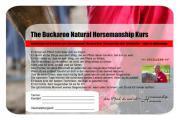 Natural Horsemanship mit