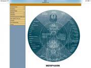PhysiotherapeutIn/ OsteopathIn nach