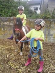 """Pony-Workshop für Kinder von 3-6 Jahre Pony Workshop, was ist das? Wir basteln und erleben spielerisch das Tier \""""Pferd\"""". Jedes Kind erhält eine Mappe mit einem Arbeitsheft (der FN*) rund ... 15,- D-55767Niederbrombach Heute, 20:37 Uhr, Niederbrombach - Pony-Workshop für Kinder von 3-6 Jahre Pony Workshop, was ist das? Wir basteln und erleben spielerisch das Tier """"Pferd"""". Jedes Kind erhält eine Mappe mit einem Arbeitsheft (der FN*) rund"""