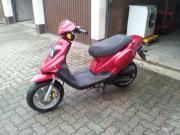 Roller Pegasus 50