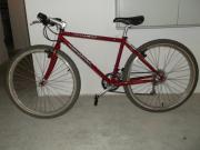 Specialized,Mountain-Bike,