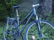 Steppenwolf Timber MTB--