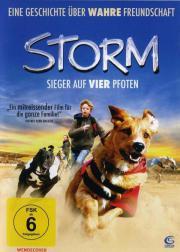 Storm sieger auf