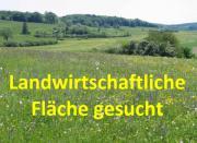 Suche landwirtschaftliches Grundstück /