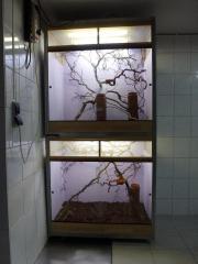 Terrarium 210x100x60cm