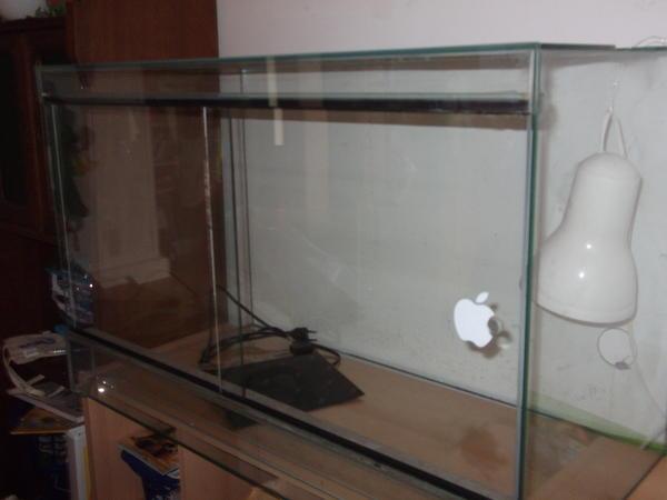 terrarium glas mit schiebet ren in starnberg reptilien terraristik kaufen und verkaufen. Black Bedroom Furniture Sets. Home Design Ideas