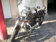 TOP Harley FXD